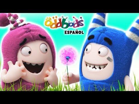 Oddbods   Asunto de Niños y Niñas   Dibujos Animados Graciosos Para Niños