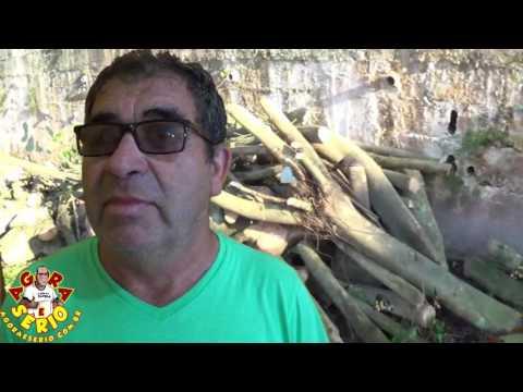 Sub - Prefeito do Distrito dos Barnabés Moacir Quirobe explica porque cortou as arvores da Escola Terra Nova