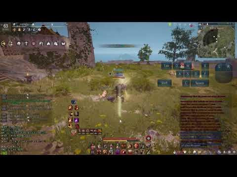 Berserker Optimal Skill Tree Priority - Black Desert Online - Im
