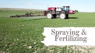 Fertilizing and Spraying thumbnail