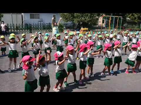 Shimmasuginoko Kindergarten