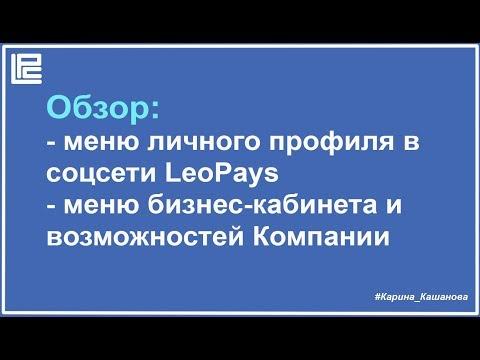 LeoPays  - меню социальной сети и бизнес кабинета