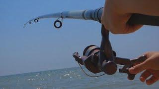 Весенний запрет рыбной ловли краснодарский край