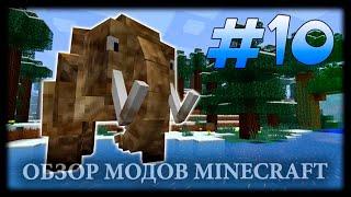 Мир Фроста, Фриза И Других Ледяных Отродий! - The Eternal Frost Mod Майнкрафт