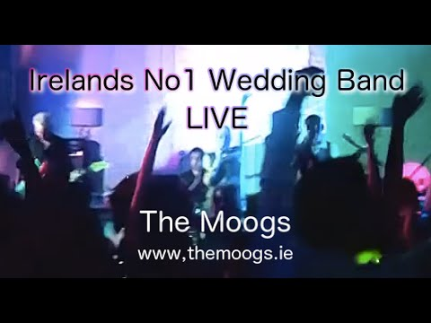 Wedding Band Ireland The Moogs – Live – Jump & I'm So Excited