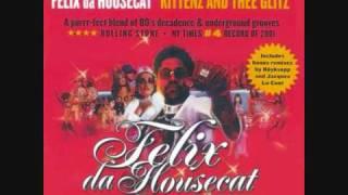 Felix the housecat - My live is music
