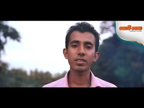 கோவி செத