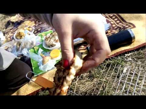 Шашлык,картошка,речка,отдых (снимал на камеру ребенок)