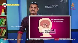 Standard 10 | Biology | Class – 20