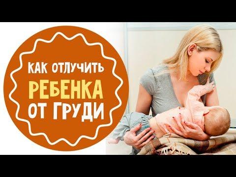 Как отлучить ребенка от груди: 7 советов для мам