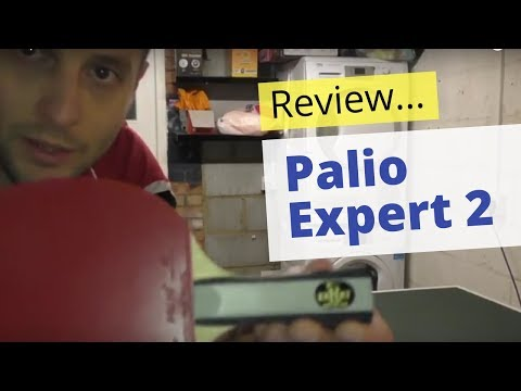 Review: Palio Expert 2 table tennis bat