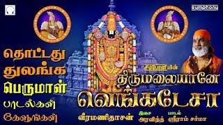 சனிக்கிழமை சிறப்பு பெருமாள் பாடல்கள் | Thirumalaiyane Venkatesa | Veeramanidasan Perumal songs