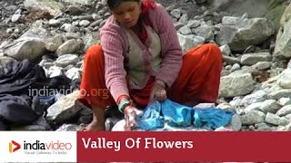 Washing in Pushpavathi river, Valley of  Flowers, Uttarakhand