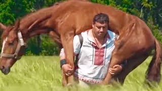 MAN CARRIES HORSE