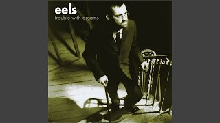 I'm going to stop pretending that I didn't break your heart - The Eels