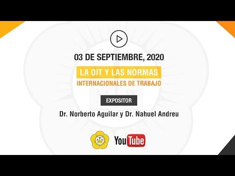 REUNIONES TEMÁTICAS DEL INSTITUTO DE DERECHO DEL TRABAJO - 03 de Septiembre 2020