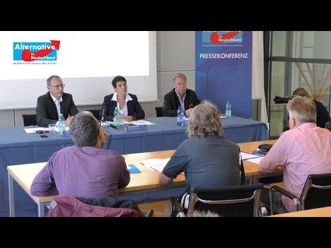 Diesel-Lüge: Pressekonferenz der AfD-Fraktion