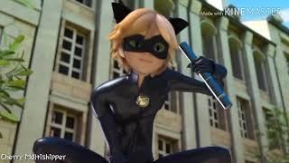 (Miraculous Ladybug) Chat Noir/Adrien || AMV - For Your Entertainment
