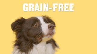 What Are The Benefits Of Feeding My Dog A Grain-Free Diet? | Chewy