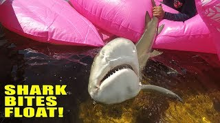 Shark Bites My Float | Monster Mike  Fishing