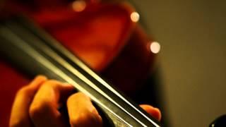 My Neighbor TOTORO(となりのトトロ)Theme Song (Violin Cover)