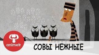 Смешной короткометражный мультфильм  Совы нежные