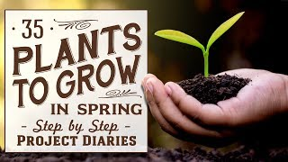 ★ 35 Plants to Grow in Spring Time (What Seeds to Sow in Spring)