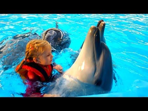 Николь плавает с дельфинами