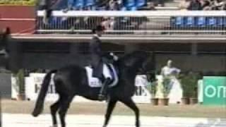 video of Ferro