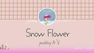 [Indo Sub] Snow Flower - V (BTS) ft peakboy Lyrics terjemahan