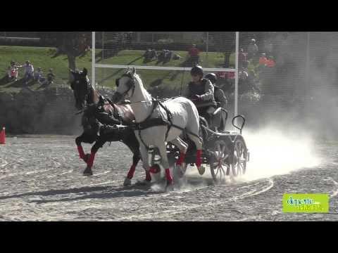 Campeonato Navarro de Enganches 3