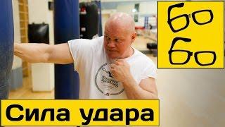 СИЛА УДАРА — популярные заблуждения! Павел Бадыров про сильный нокаутирующий удар и формулу силы