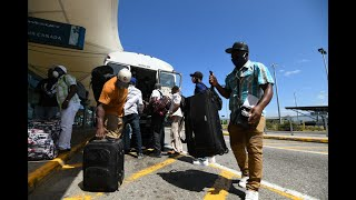 Jamaican farm workers head to Canada
