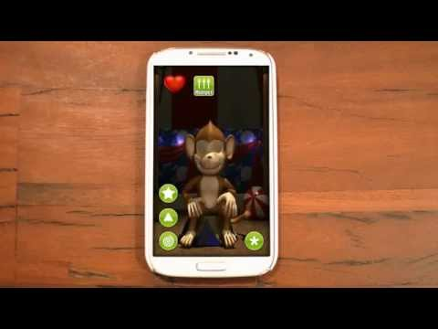 Video of Talking Monkey