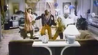 Bachelor Party (1984) Video