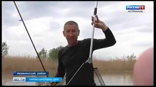 Астрахань рыбалка запрет на рыбалку