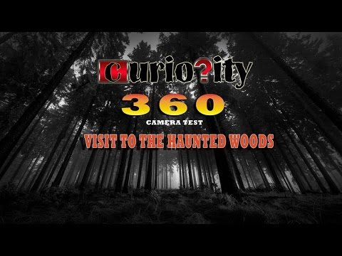 Haunted Woods (360° Video)