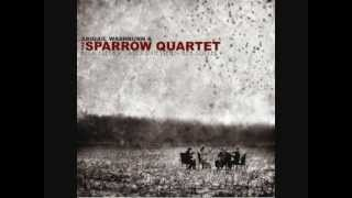 Abigail Washburn and the Sparrow Quartet - Captain
