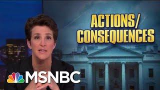 Roiled By Trump Politics, NOAA Seeks Accountability, Atonement   Rachel Maddow   MSNBC