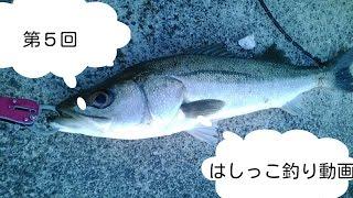 第5回はしっこ釣り動画石川県リバーシーバス編