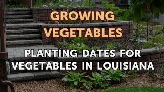 Planting Dates for Vegetables in Louisiana