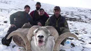 WIND DUST AND SNOW MY MARCO POLO ARGALI RAM HUNT