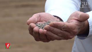 В Гусь-Хрустальном районе начала работать линия по производству гранулированных минеральных удобрений