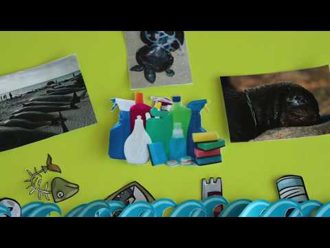 video Un océano de Ciencia prog04 Crisis Pesquera