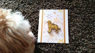 Doggy Sympathy Card