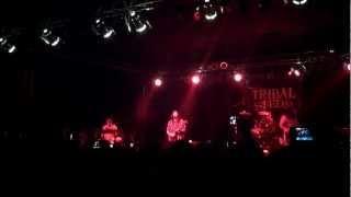 """Tribal Seeds """"In your eyes"""" Soma San Diego"""