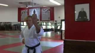 preview picture of video 'Présentation club arts martiaux de Vitrolles - Dojo Fudoshin'