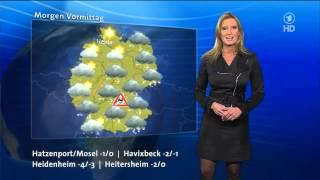 Claudia Kleinert In Nylons Rock Skirt Dress, Heels 10_12_2012 Wetter Im Ersten