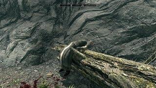 The Elder Scrolls V: Skyrim. Добыть кровь темного эльфа. Прохождение от SAFa