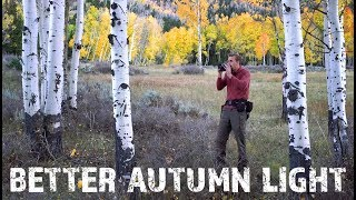 How To Get Better Fall Photography